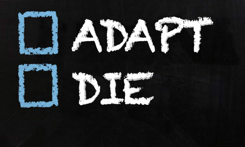 Adapt or Die: 6 Survival Tips