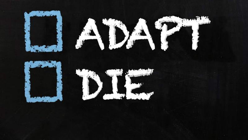 Adapt or Die: 6 Survival Tips